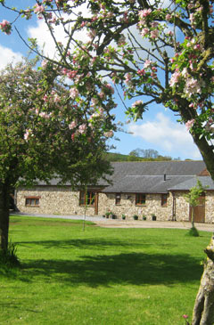 Holiday Cottage in East Devon